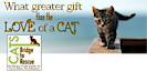 Cats Bridge To Rescue's Company logo