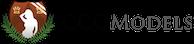 Ccg Models's Company logo