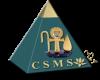 Celestial Space Medi-Spa's Company logo