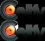 Cellfy's Company logo