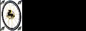 Celo Europa's Company logo