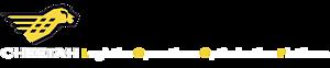 Cheetah Software Systems's Company logo