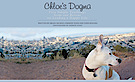 Chloe's Dogma: 5 Simple Truths From Our Rescue On Living A Happy Life's Company logo