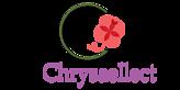 Chrysaellect's Company logo