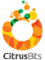 Diggy Software Systems's Competitor - Citrusbits logo