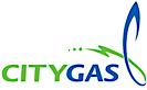 City Gas Pte. Ltd.'s Company logo