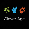Clever Age's Company logo