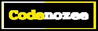 Codenozee's Company logo