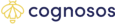 Cognosos's company profile