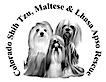 Colorado Shih Tzu Maltese And Lhasa Apso Rescue's Company logo