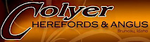 Colyer Herefords's Company logo
