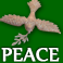 Cumceg's Company logo