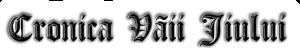 Cronica Vaii Jiului's Company logo
