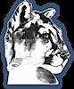 Crossroads Charter Academy's Company logo