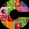 Cryptophoto's Company logo
