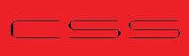 CSS International's Company logo