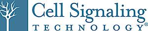 CST's Company logo