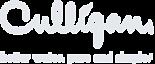 Culligan Newburgh Ny's Company logo