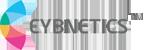 Cybnetics's Company logo