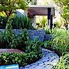 Cycas Landscape Design And Consultancy's Company logo