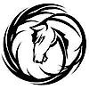 Dark Horse Organics's Company logo