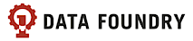 Data Foundry's Company logo