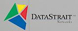 Data Strait's Company logo