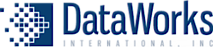 Data Works  International's Company logo