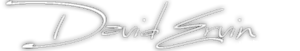 David Ervin's Company logo