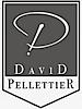 Davidpellettier's Company logo