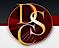 Tdsllc's Competitor - Document Storage Corp logo
