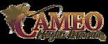 Deborah Riley Lmt's Company logo