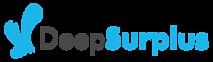 Deep Surplus's Company logo
