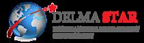 Delma Star International Management Consultancy's Company logo