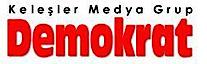 Demokrat Medya's Company logo