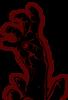 Demon Dogs's Company logo