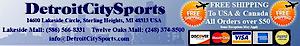 Detroit City Sports's Company logo