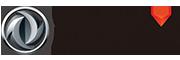 Dfm - Myanmar's Company logo