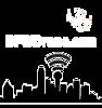 Dfwdrone's Company logo
