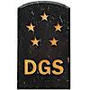 Dgs Games's Company logo