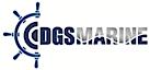 DGS Marine's Company logo