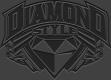 Diamond Style Productions's Company logo