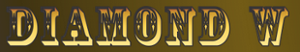 Diamondwchuckwagon's Company logo