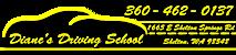 Diane's Driving School's Company logo