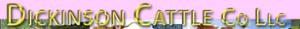 Dickinson Cattle's Company logo