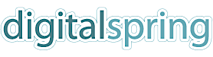 Digital Spring's Company logo