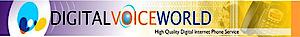 Digital Voice World's Company logo