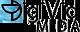Digivid Media's company profile