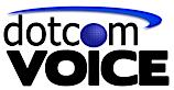 Dingle Voice's Company logo