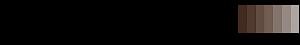 Direct Source Flooring's Company logo